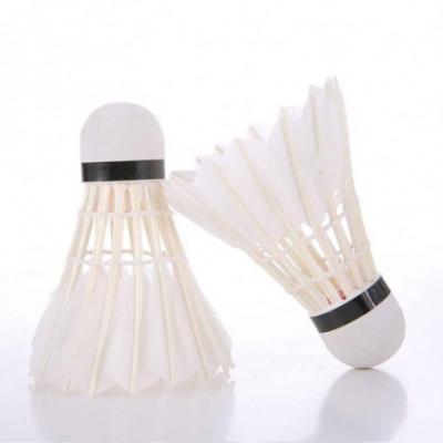 AMUSI 402 badmintono plunksnelė